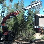 Crane Service Construction Contractor Equipment